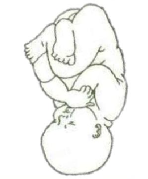 Estática fetal 6