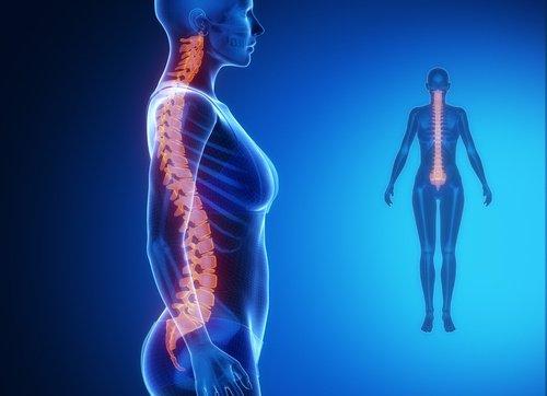 Enfermedades del disco intervertebral